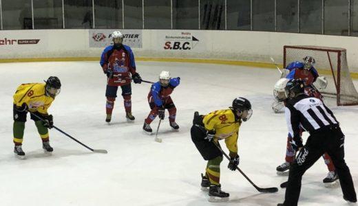 "Tolimesnė ""Geležinio Vilko"" kova Riga Cup 2018"